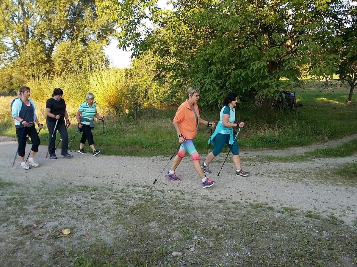 Nordic_Walking_2016_1